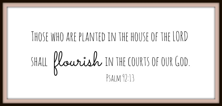 Planted in the House of God